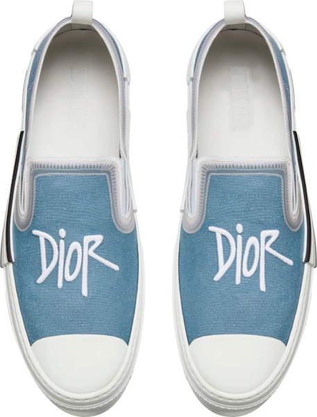 Blue Canvas With Dior And Shawn Signature