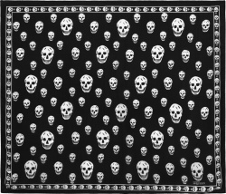 Alexander Mcqueen Black White Big Skull Scarf