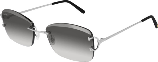Cartier Ct 0010 Rs Sunglasses