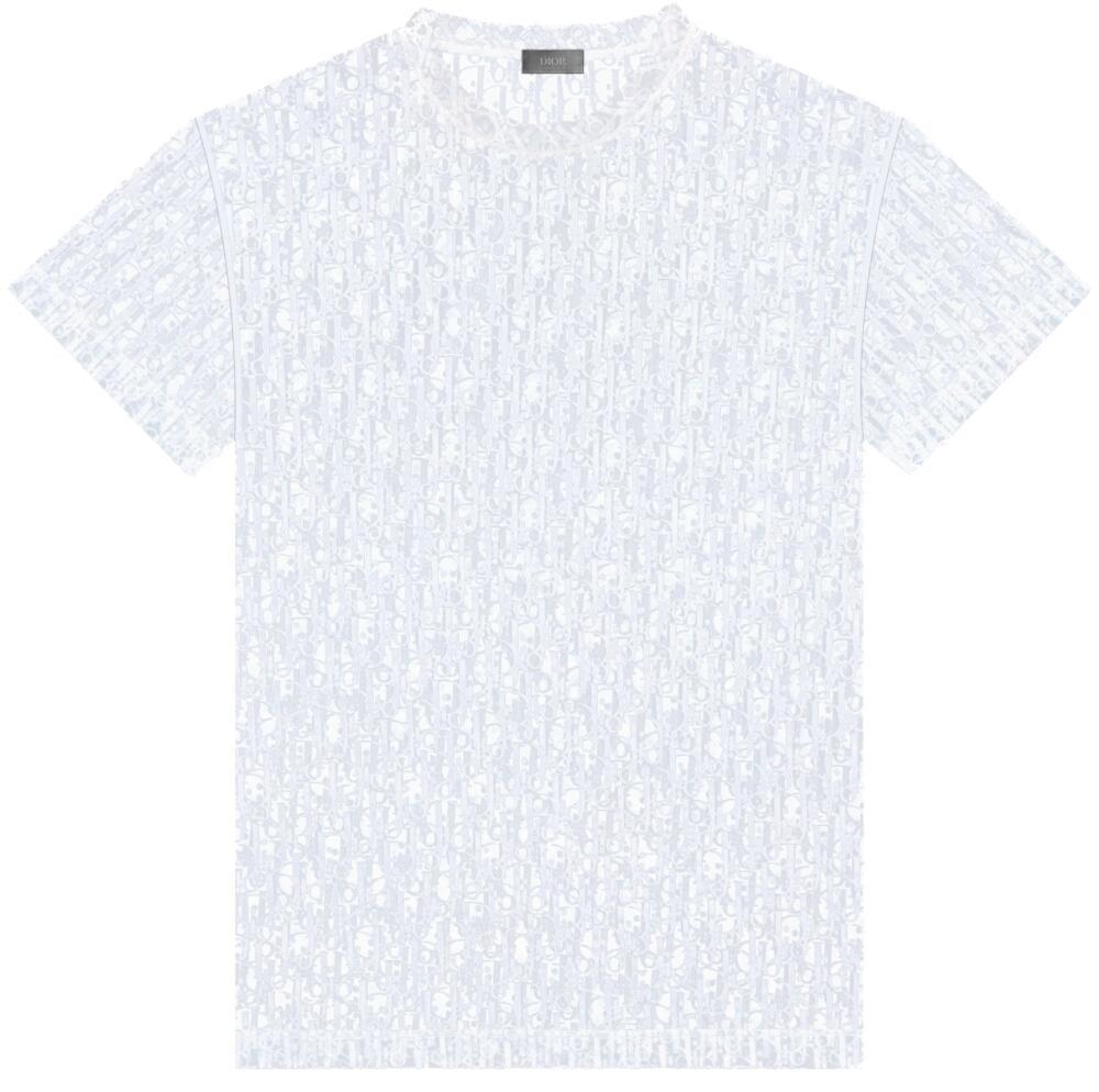 'Dior Oblique' Dévoré Effect T-Shirt