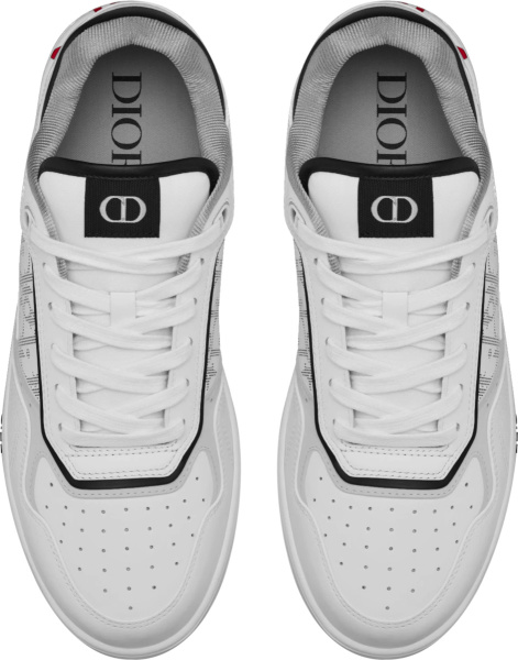Dior X Shawn White Low Top B27 Sneakers