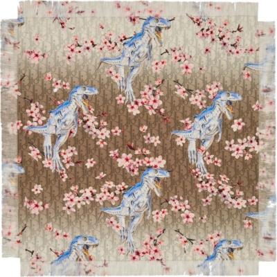 Dior X Soyarama Print Silk Scarf