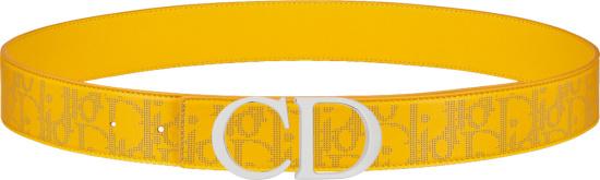Dior Yellow World Tour Galaxy Oblique Belt 4800zzclp H260