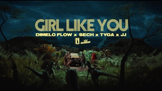 Incorporated Style Cover Image For Damelo Flow Sech Tyga Ji Girl Like You Music Video