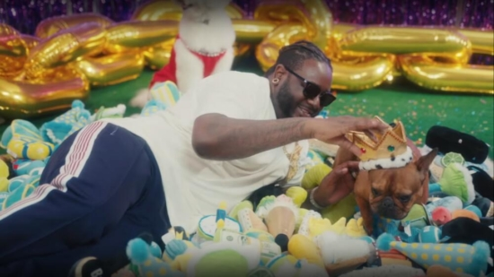 Incorporated Style Cover Image For T Pain Its My Dogs Birthday Music Vide