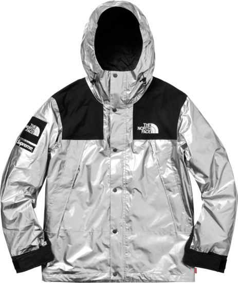 Supreme X The North Face Metallic Silver Jacket